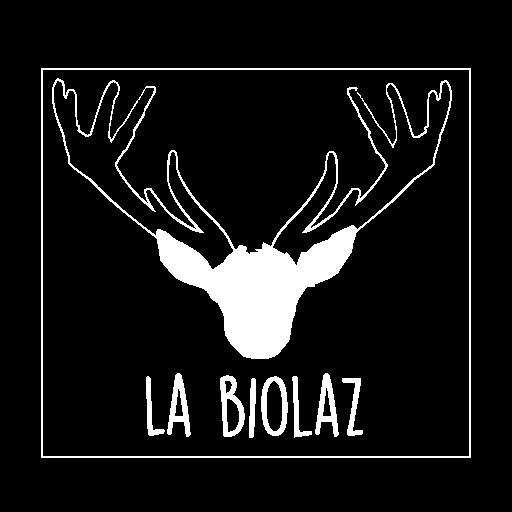 Maison d'hôtes, La Biolaz